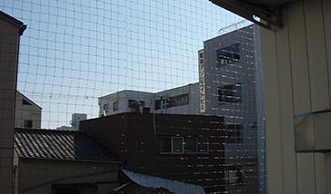 ハトよけネット設置の写真